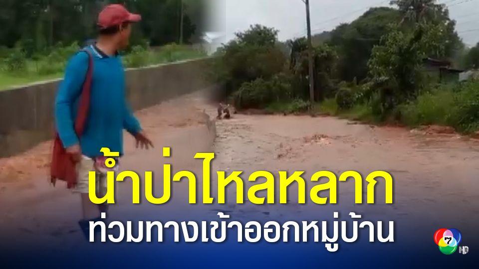 น้ำป่าไหลหลากเข้าท่วมถนนทางเข้าออกหมู่บ้าน ใน จ.ยโสธร ระดับน้ำท่วมสูงกว่า 50 เซนติเมตร
