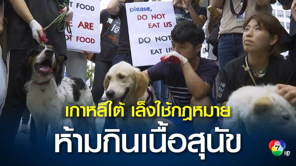 เกาหลีใต้ เล็งออกกฎหมายห้ามรับประทานเนื้อสุนัข