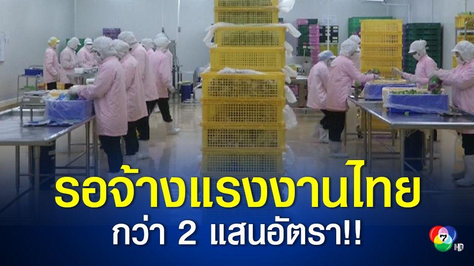ก.แรงงาน เตรียมตำแหน่งงานกว่า 2 แสนอัตรารองรับแรงงานไทยที่กำลังหางานทำ