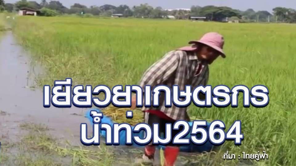 เยียวยาเกษตรกร น้ำท่วมพื้นที่ทำกิน จ่ายสูงสุด 30 ไร่/ครัวเรือน เช็กหลักเกณฑ์ที่นี่