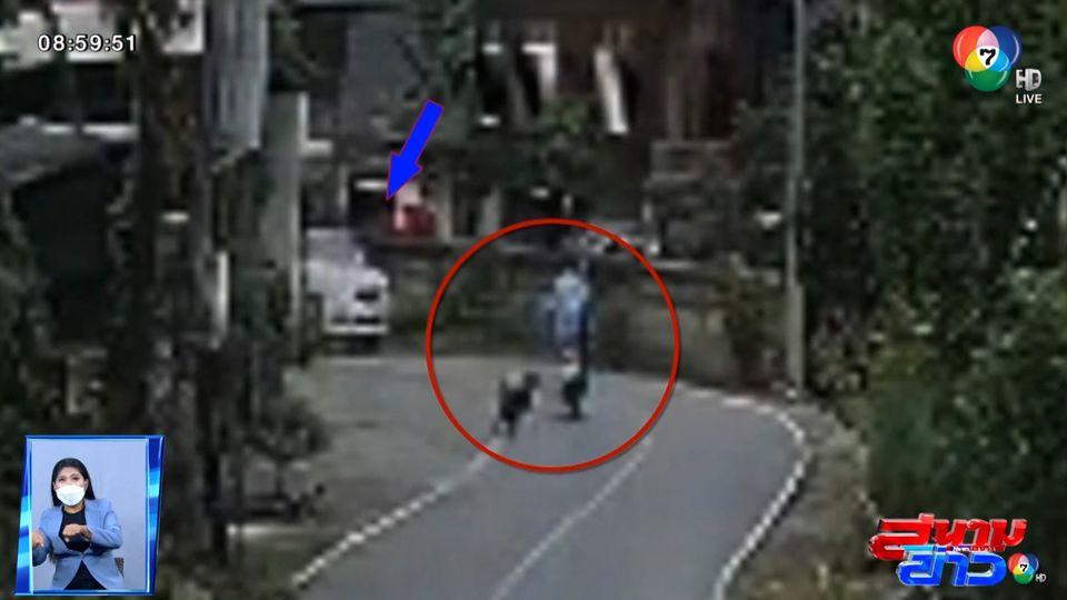 ภาพเป็นข่าว : สลด! ลุงขี่รถ จยย.หนีสุนัข ถูกรถชนเสียชีวิต จ.เชียงใหม่