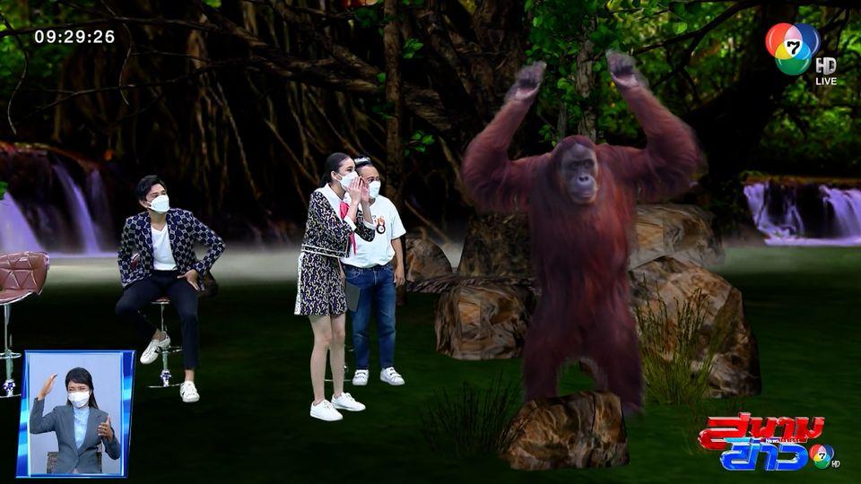 ปิ่น ชรินพร เผยความท้าทายในการเข้าฉากกับลิง : สนามข่าวบันเทิง