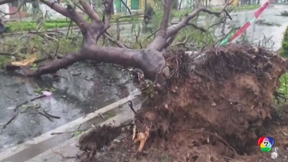 คืบหน้าพายุโมลาเบพัดถล่มเวียดนาม เสียชีวิต 2 สูญหาย 30