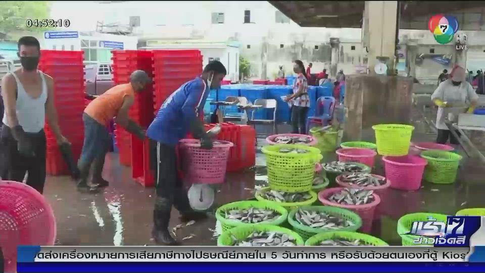 เตรียมออกมาตรการประกันราคากุ้ง ช่วยเกษตรกร หลังผู้บริโภคกังวลไม่กล้าซื้ออาหารทะเล