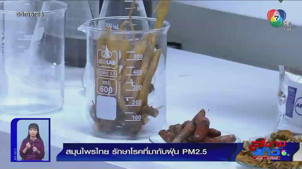 สมุนไพรไทยรักษาโรคที่มากับฝุ่น PM 2.5