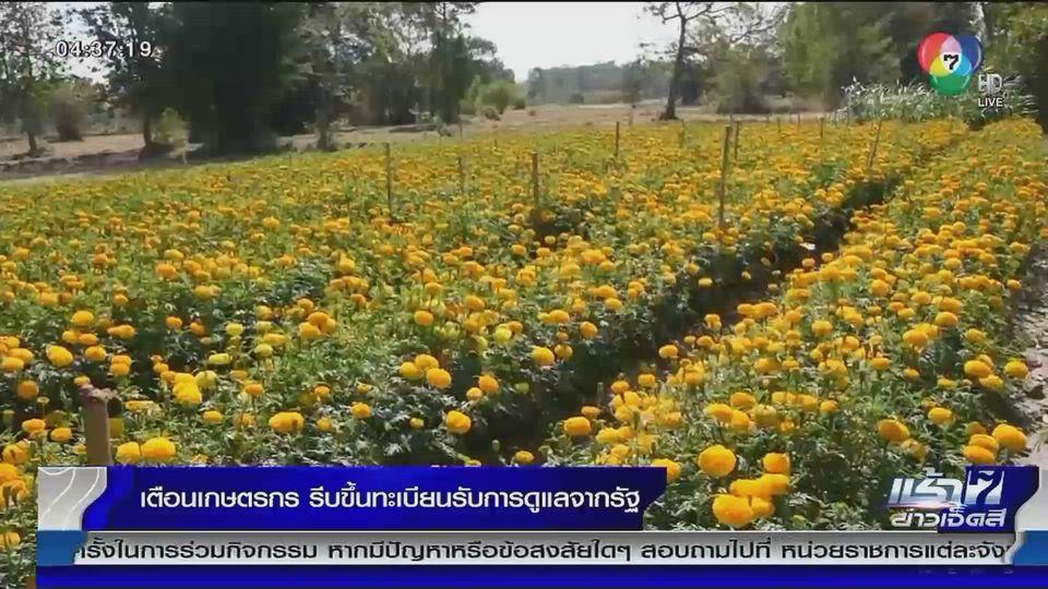 เตือนเกษตรกร รีบขึ้นทะเบียนรับการดูแลจากรัฐบาล