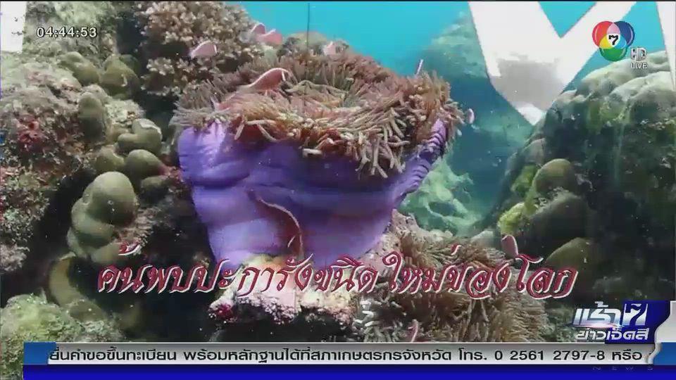 Green Report : สิรินธรเน่ ปะการังชนิดใหม่ของโลกที่ทะเลแสมสาร