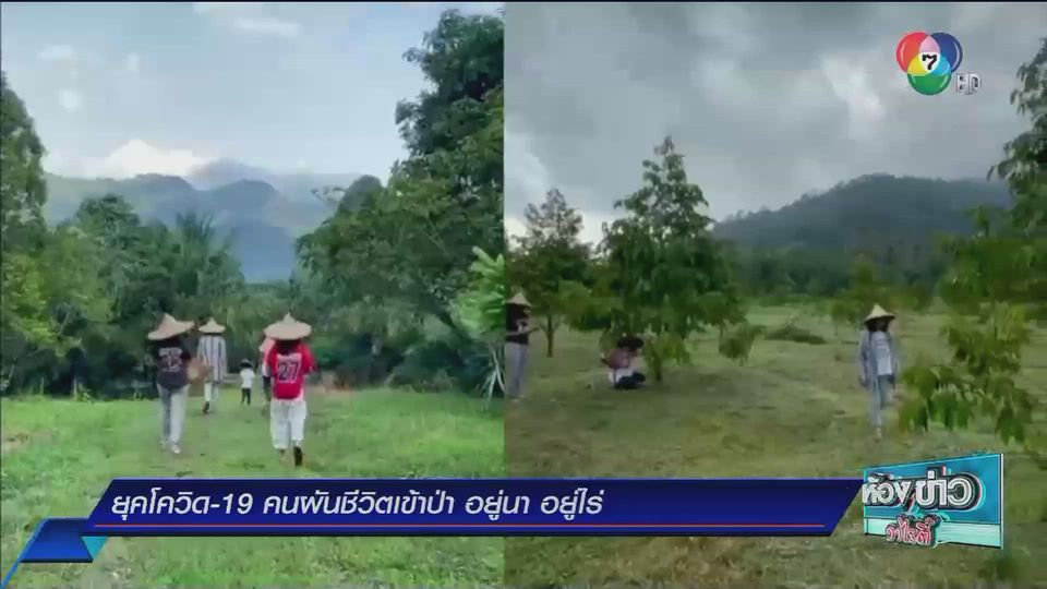 รายงานพิเศษ : ยุคโควิด-19 คนผันชีวิตเข้าป่า อยู่นา อยู่ไร่