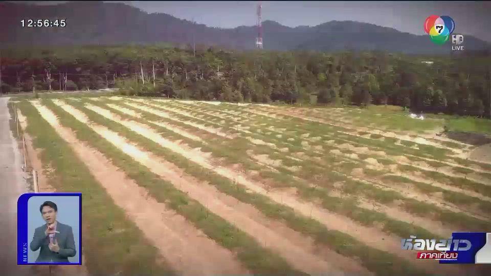 ตีตรงจุด : เกษตรเชิงพาณิชย์ ถึงเวลาจ่ายค่าน้ำหรือยัง?