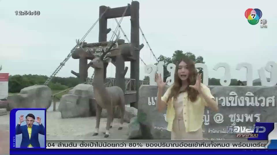 บัวบูชา พาเที่ยว : สะพานชมกวาง หนองใหญ่ @ชุมพร