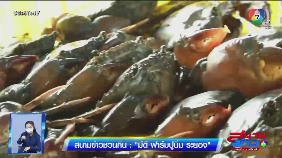 สนามข่าวชวนกิน : Mee D ฟาร์มปูนิ่ม ระยอง