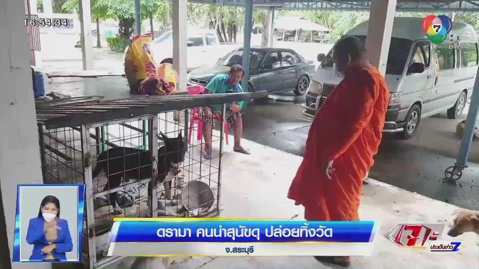 ดรามา... คนนำสุนัขดุปล่อยทิ้งวัดใน จ.สระบุรี