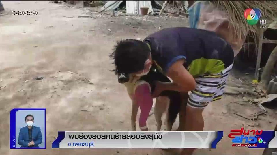 พบร่องรอยคนร้ายลอบยิงสุนัขเพศเมียอายุแค่ 5 เดือน บาดเจ็บ