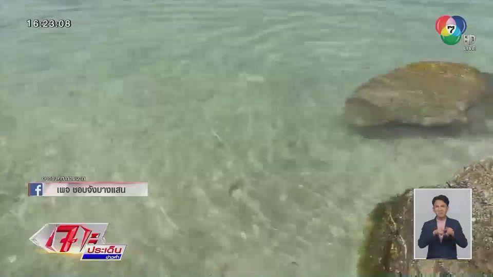 อ.เจษฎา ไขข้อสงสัย ภาพทะเลบางแสน น้ำใสราวมัลดีฟส์