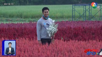 อนุวัตจัดให้ : I Love Flower Farm มากกว่าทุ่งดอกไม้ จ.เชียงใหม่