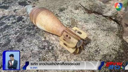 ภาพเป็นข่าว : ระทึก! ชาวบ้านเข้าป่าหาเห็ด เจอระเบิดแทน