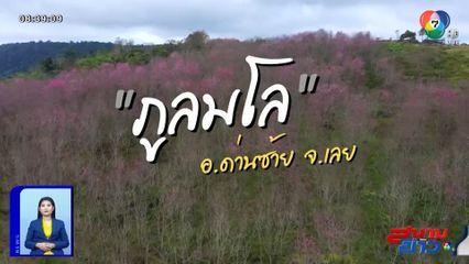 เจษฎาโอ้โฮ : ทะเลหมอกภูลมโล ซากุระเมืองไทย จ.เลย