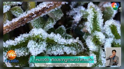 หนาวจัด เกิดปรากฏการณ์น้ำค้างแข็งที่ยอดดอยอินทนนท์ จ.เชียงใหม่