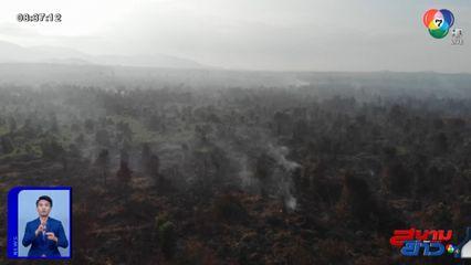 กรมป่าไม้ เริ่มใช้มาตรการชิงเก็บ-ชิงเผา ป้องกันไฟป่า นำร่องที่แม่ฮ่องสอน-ลำพูน