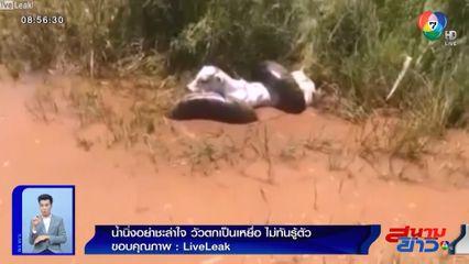 ภาพเป็นข่าว : สุดสยอง ลูกวัวนอนแช่น้ำ จู่ๆ เจออนาคอนดารัด กลายเป็นเหยื่อแบบไม่ทันตั้งตัว