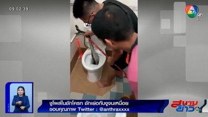 ภาพเป็นข่าว : สู้จนเหนื่อย! ชายเสื้อดำพยายามดึงงูออกจากชักโครก ราวกับชักเย่อ