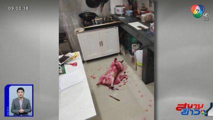 ภาพเป็นข่าว : เจ้าของแทบช็อก! เห็นสุนัขนอนจมกองเลือด ที่แท้เลอะน้ำแดง