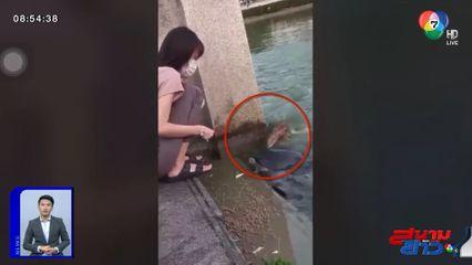 ภาพเป็นข่าว : ตกใจสุดขีด! ให้อาหารปลาอยู่ดีๆ ตัวเงินตัวทองโผล่แย่งกิน