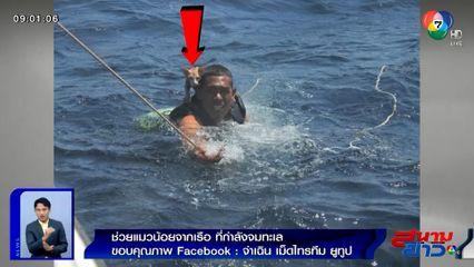 ภาพเป็นข่าว : ภาพประทับใจ! ทหารเรือช่วยแมวน้อย 4 ตัว จากเรือที่กำลังจมทะเล