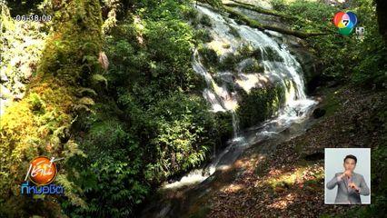 Green Report : อุทยานฯดอยอินทนนท์ปิดให้ธรรมชาติฟื้นตัวปีแรก