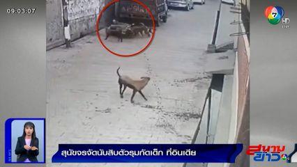 ภาพเป็นข่าว : สุนัขจรจัดนับสิบตัว รุมกัดเด็ก 7 ขวบ ที่อินเดีย