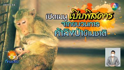 Green Report : เปิดเมนูเปิบพิสดาร จากขบวนการค้าลิงป่าข้ามชาติ