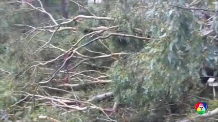 พายุฝนฟ้าคะนองในออสเตรเลีย