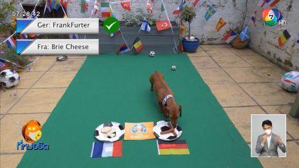 สุนัขทายผลฟุตบอลยูโร คู่ใหญ่วันนี้