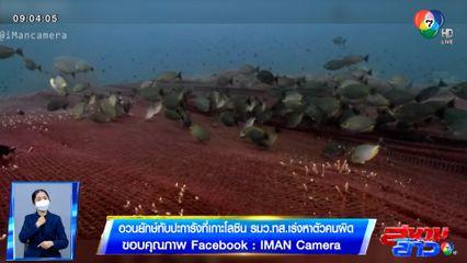 ภาพเป็นข่าว : อวนยักษ์ทับปะการังที่เกาะโลซิน รมว.ทส.เร่งหาตัวคนผิด
