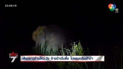 เตือนชาวบ้านให้ระวัง ช้างป่าเริ่มดื้อ ไม่ยอมกลับเข้าป่า