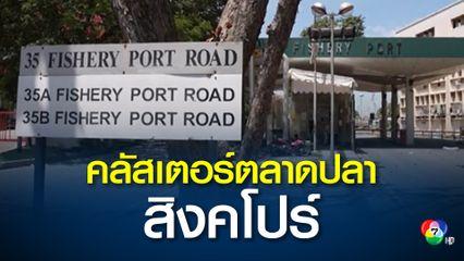 สิงคโปร์คุมเข้ม หลังพบผู้ติดเชื้อเชื่อมโยงคลัสเตอร์ตลาดปลาจูรง จนทำให้มียอดสะสม 665 คน