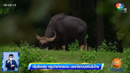 Green Report : กลุ่มป่าแก่งกระจาน มรดกโลกบนแผ่นดินไทย