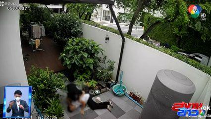 ภาพเป็นข่าว : เตือนระวัง! ทำสวนอยู่ดีๆ เกิดวูบไม่รู้ตัว