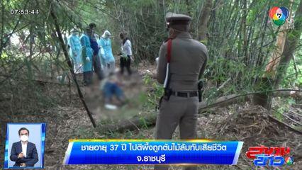 ชายอายุ 37 ปี ไปตีผึ้ง ถูกต้นไม้ล้มทับเสียชีวิต จ.ราชบุรี