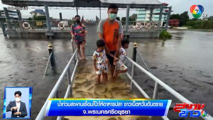 ภาพเป็นข่าว : ชาวเน็ตหวั่นอันตราย! น้ำท่วมสะพานเชื่อมโป๊ะให้อาหารปลา วัดพนัญเชิงฯ