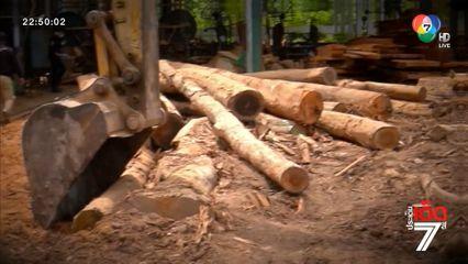บุกตรวจยึดไม้แปรรูป โยงขบวนการลักลอบตัดไม้ จังหวัดชายแดนภาคใต้ [เจาะเกาะติด]