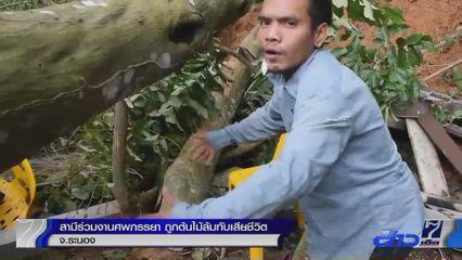 สามีนั่งเฝ้าศพภรรยา ถูกต้นไม้ล้มทับเสียชีวิต